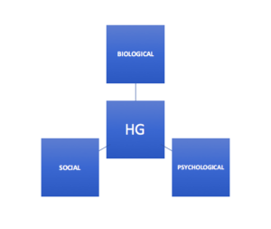 Hyperemesis Gravidarum (HG): Impact on Emotional Health and Wellbeing