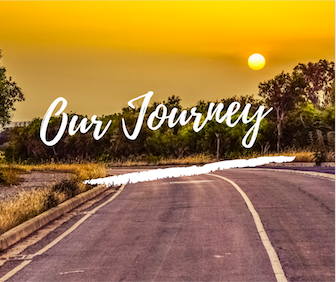 Our Journey - International Forum for Wellbeing in Pregnancy